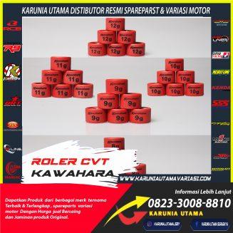 Roller CVT Kawahara